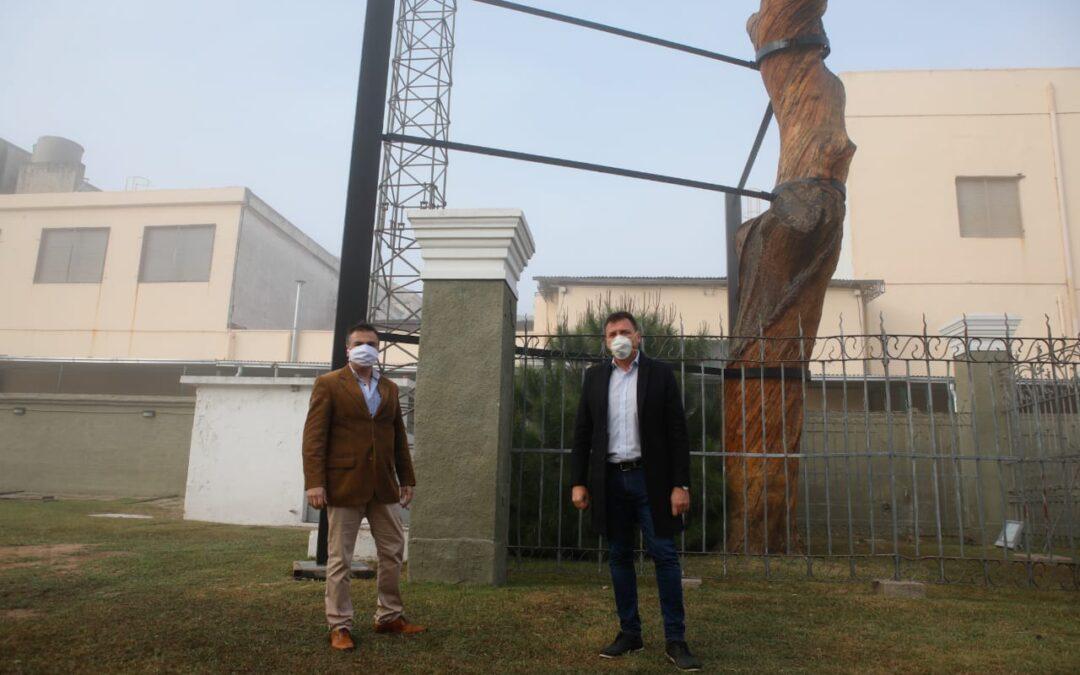 Se completaron trabajos de conservación en el histórico Pino de San Lorenzo