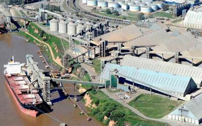 Vicentín: AFIP denunció a la cerealera por maniobras fraudulentas con facturas apócrifas por $ 110 millones