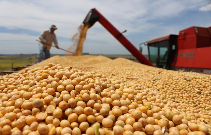 Perotti, en el remate del primer lote de soja 2021, habló del rol de la Hidrovía y los biocombustibles